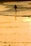 beach boy poster