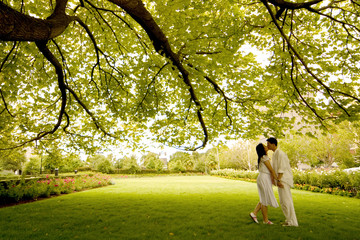 a kiss under the tree