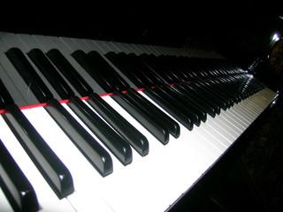 piano keys, 88