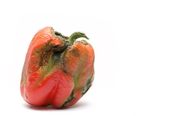 not-so-fresh bell pepper