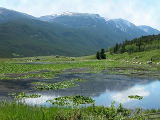 reeves lake, montana