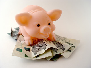 pig with money