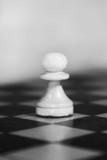 white pawn poster