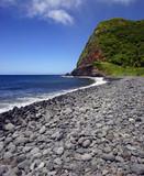 maui island pebble beach poster