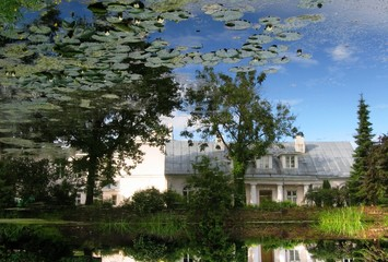 reflection of nature in pond of botanic garden in tartu, estonia