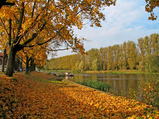 autumn view at the river in tarru, estonia