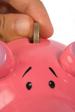 business savings on piggy bank - closeup poster