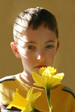 boy smelling flower poster
