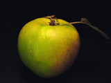 apple still life poster
