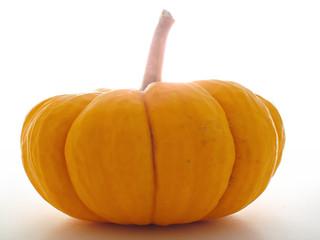mini pumpkin backlit