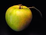 apple still life 2 poster