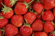 roleta: strawberries