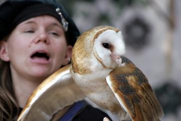 woman holding an american barn owl