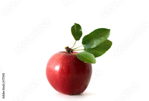 poster of apple