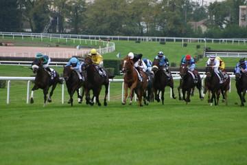 chevaux_pursang