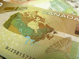 canadian dollar close-up
