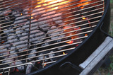 bbq flames through the grid poster