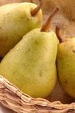 bartlett pears vertical close poster