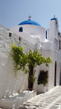 greek church with  green tree poster