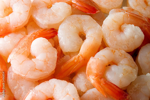 shrimps - 96954