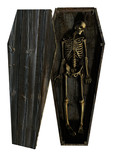 skeleton decaying in coffin poster