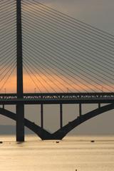 le pont de l'iroise (brest) de nuit