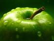 Leinwanddruck Bild - green apple