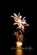 fireworks [2]