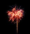 fireworks [7]