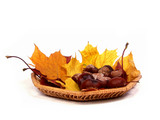 autumn basket poster