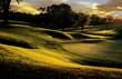 Quadro golf club