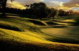 Fototapety golf club