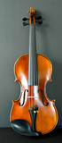 upright violin