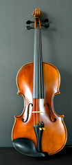 upright violin