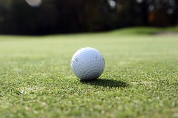 coucou c'est moi la balle de golf !