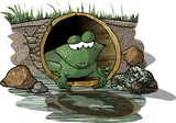 reflecting frog poster