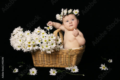 baby and daisies