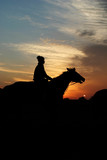horse and rider at sunrise poster