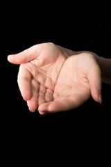 hands #17