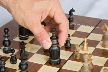 chess 02