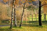 autumn france poster