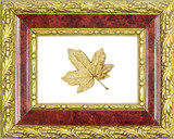 framed golden maple leaf poster
