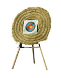 shooting wheel target (isolated) poster