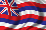 flag of hawaii poster