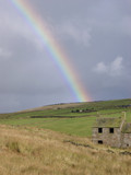 derelict house and rainbow poster