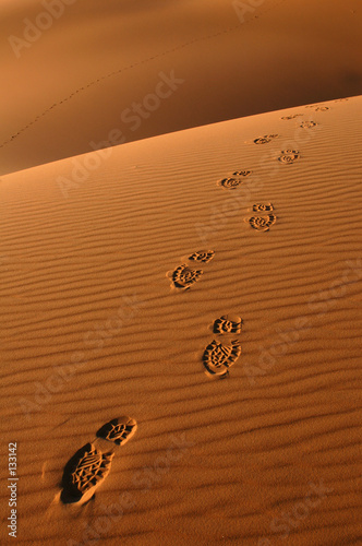 footsteps in the sahara desert