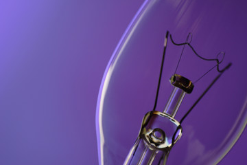 light bulb on purple background