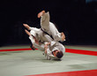 Leinwanddruck Bild - judo fight