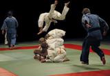 judo training (jumps) poster