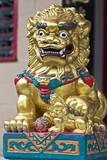 golden stone lion poster